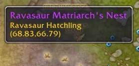 Adorable Hatchling Nests