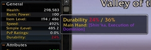 Character Info Durability