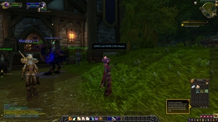 wow addon D4HP