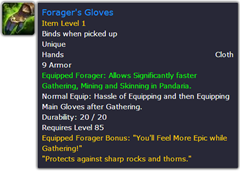 wow addon Equipped Forager