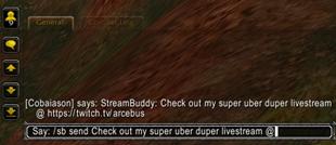 StreamBuddy
